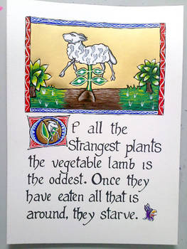 Vegetable Lamb Bestiary Page