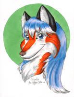 Silverfox Portrait by hollyann
