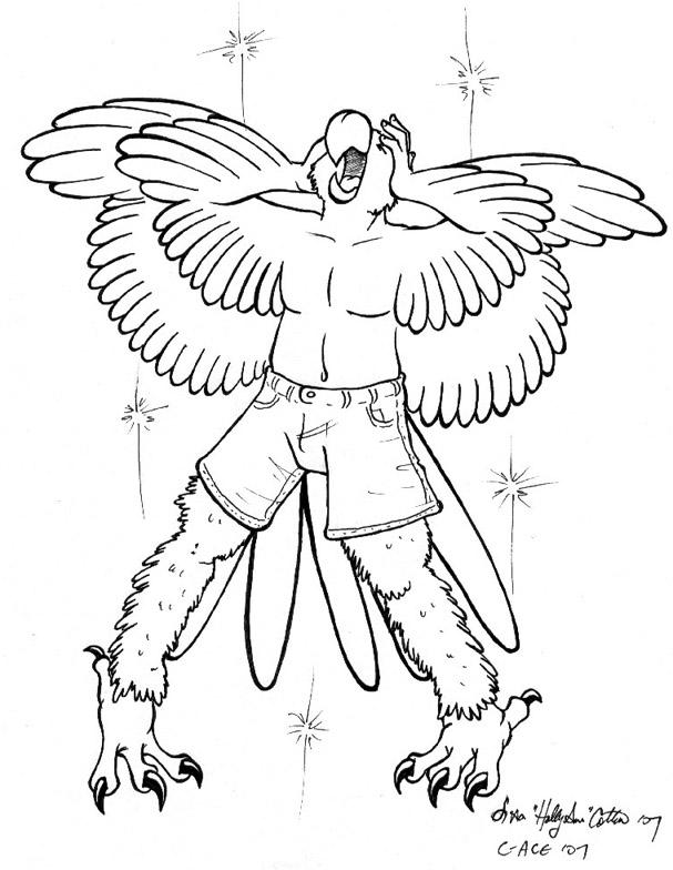 Parrot Transformation by hollyann