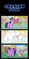 Quantum Pony.