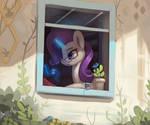 Rarity Window