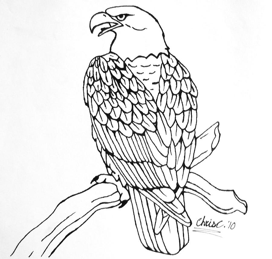 Line Art Eagle : Eagle linework tattoo concept by ticklemehoho on deviantart