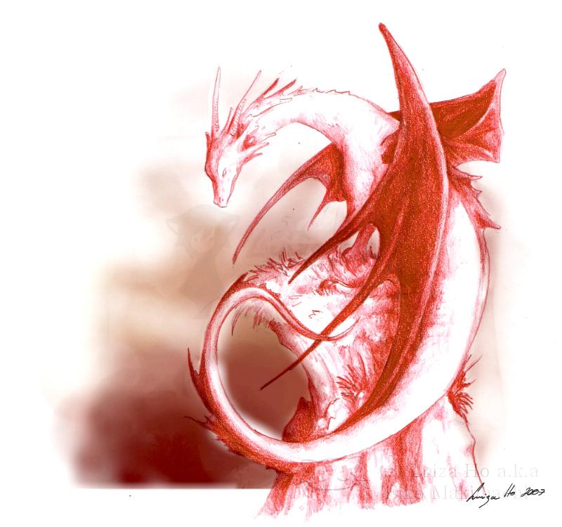 The red dragon Smaug by eikomakimachi
