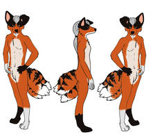 NEW nearly comeplete ref shet by k9pilot85-d5k0ng7