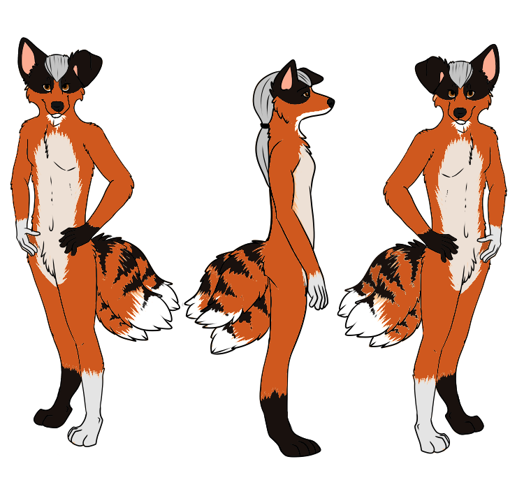 NEW nearly comeplete ref shet by k9pilot85-d5k0ng7 by k9pilot85