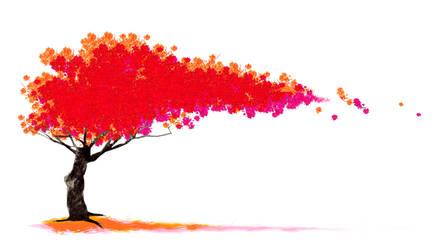 Sakura by Peccatum