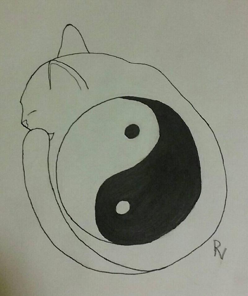 Yin Yang Cat By Revitytheartistic On Deviantart