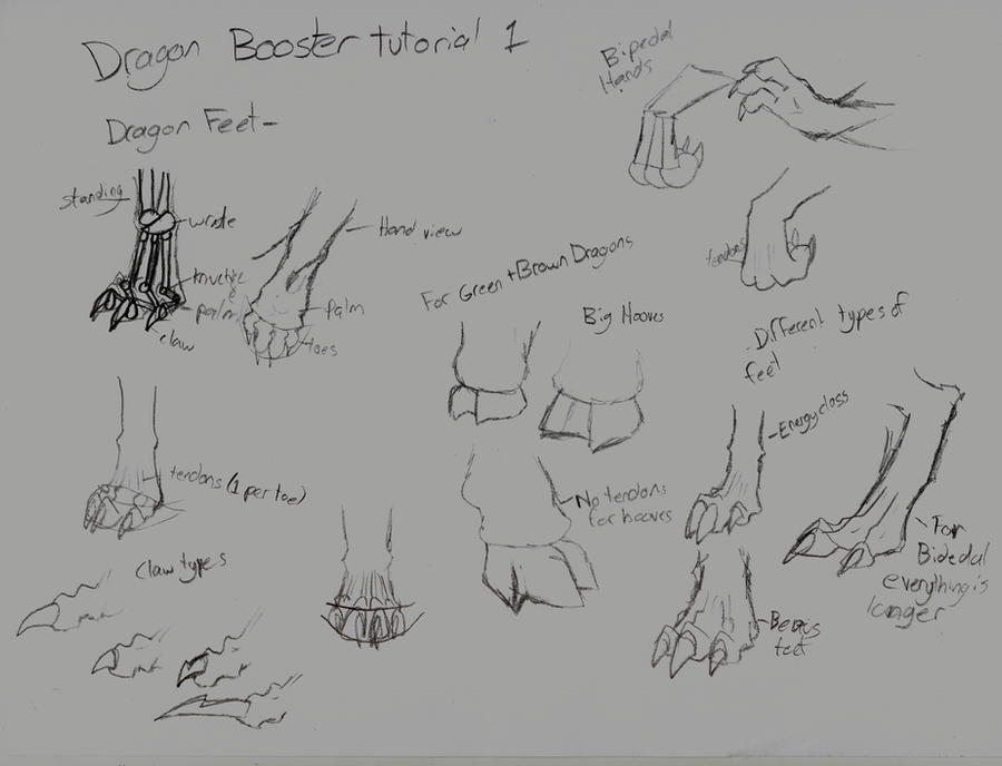 Dragon feet tutorial by Mono-Dragon on DeviantArt
