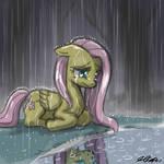 Rain Won't Wipe Away the Tears