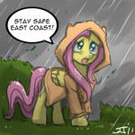 Fluttershy's Msg to East Coast