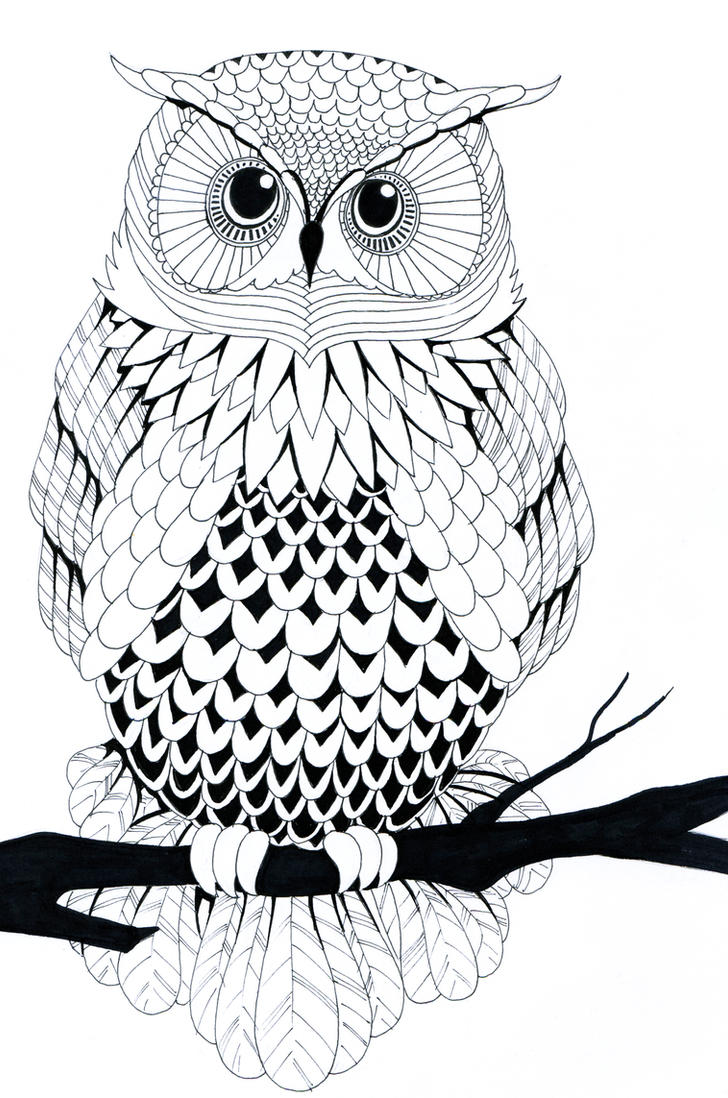 Black And White Drawings Black And White Owl728 x 1098