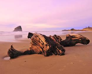 Oregon Beach by flatsix911