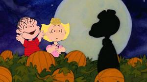 It's the Great Pumpkin, Charlie Brown - Remake