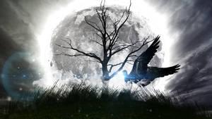 Fantasy Dark Angel