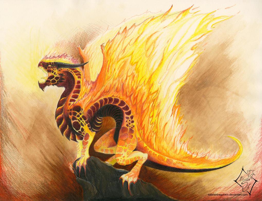 Elemental Dragon: Fire by SabrielDragonkin