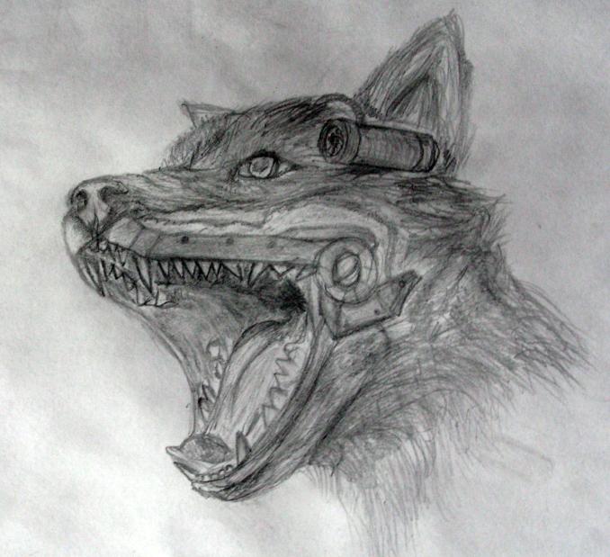 Как нарисовать поэтапно волков