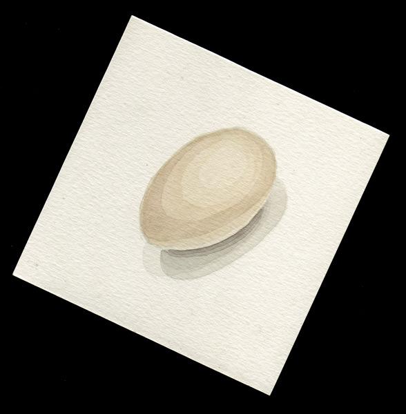 Final project - Egg by ManicMechE