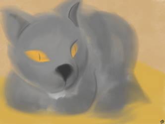 My cat, Greyson by Rockbox1590