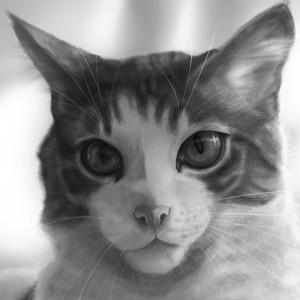 RoosmaRoo's Profile Picture