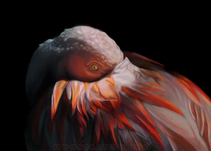 Flamingo by RoosmaRoo