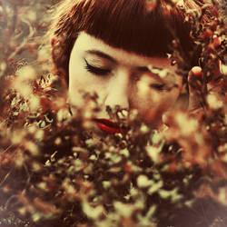 Pine Away by dorguska