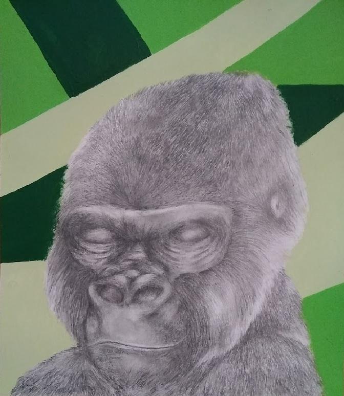 Gorilla by OrangeNinja1987