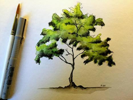 tree #98