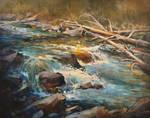 Along Ribbon Creek