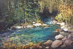 Creekside Reflections