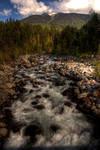 Back Woods Creek