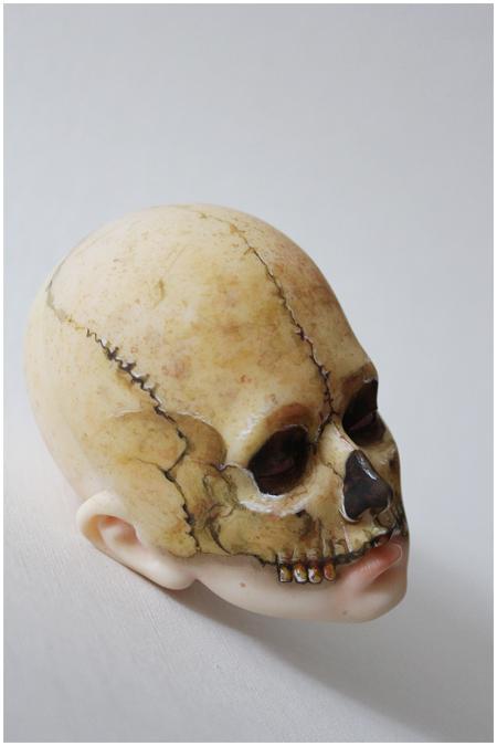 Skull head by Follow-the-Wind
