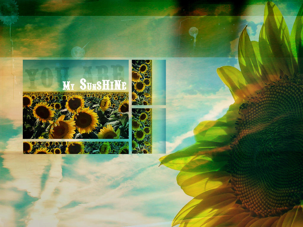 You Are My Sunshine Wallpaper By Draconis393 On Deviantart