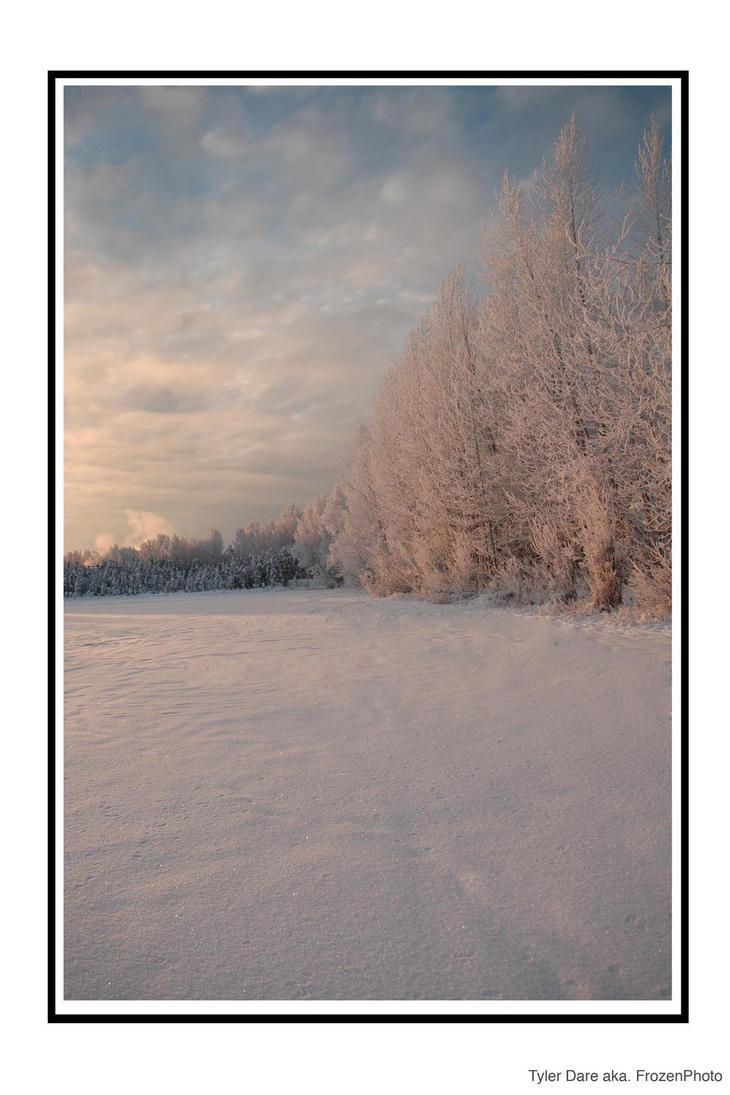 Winter Wonderland by FrozenPhoto