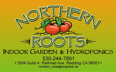 Northern Roots Logo Art by GiDesign