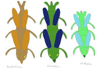 Aeropede species by Tarturus