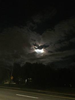 Some Moonlight