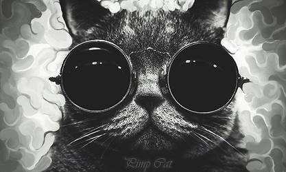 Pimp Cat by SquishFX