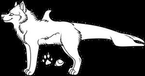 048 - Orca Template