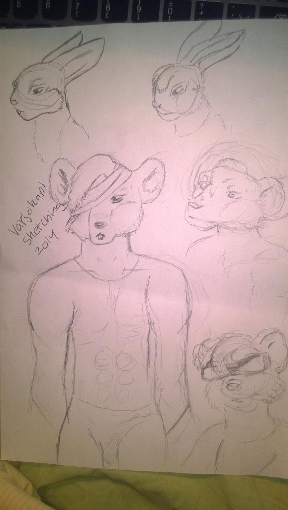 Random sketching by Varjokani