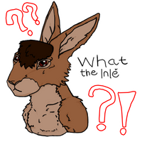 What the Inle sticker