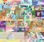 FlutterDash Collage