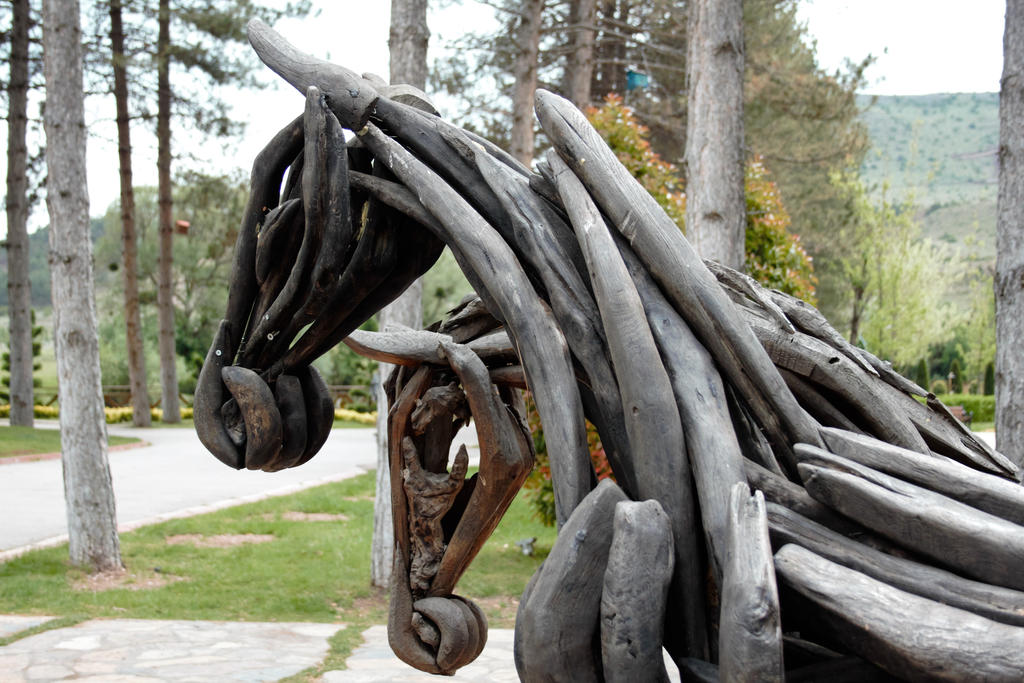 Wooden Horses by sevket