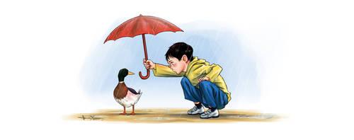 Of Ducks and Rain
