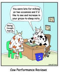 Cow Performance Review