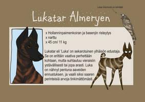 Character sheet: Lukatar by Goenkeel