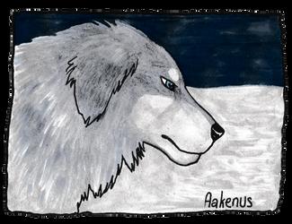 Aakenus by Goenkeel