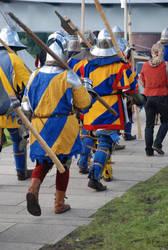 Sweeden warriors