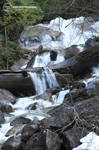 Shannon Falls Stream