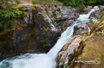 Little Qualicum Falls - Upper falls
