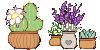 plant series 01 by ohitskim
